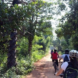 REPBIFD2_FD_Cycling_Temples and Countryside_2