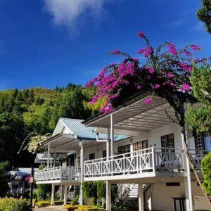 Kinabalu Pine Resort - View