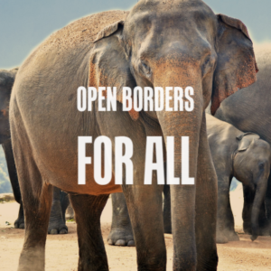 Open-Borders-for-All